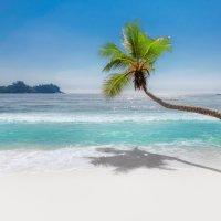 Пляж :: Lucky Photographer