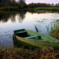 В тишине... :: Нэля Лысенко