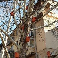 Многоэтажка готова к приему жильцов! :: Александр Скамо
