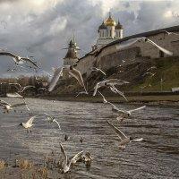 Динамика :: Denis Makarenko
