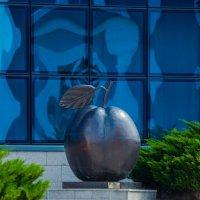 Памятник Курской антоновке :: Руслан Васьков