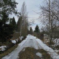 Природа в марте. :: ТАТЬЯНА (tatik)