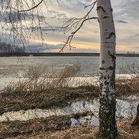 Весенний пейзаж :: Александр Тулупов