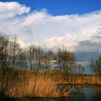 Из прозрачной небесной воды воду пьют белогривые кони... :: Евгений Юрков