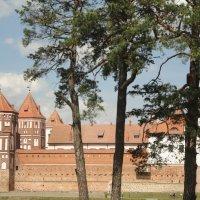 Мирский замок :: Elena
