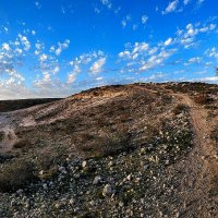 Пустыня Негев не такая уж...пустыня) :: Осень