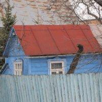 Синий домик с красной крышей :: Дмитрий Никитин