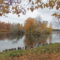 Осень :: Светлана