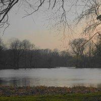 Вечером на озере :: Маргарита Батырева