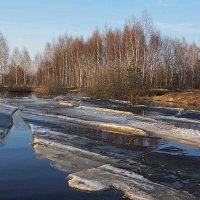 Ледоход на Пре :: Сергей Курников
