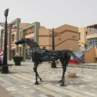 Шарм-эль-Шейх, Египет :: tgtyjdrf