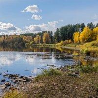 Река Ухта при впадении в неё лесной речки Крохаль (Республика Коми) :: Николай Зиновьев