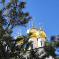 С-Петербург :: Galina Belugina