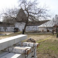 Котейка на территории музея :: Анна Воробьева