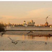 вечер на пруду :: Сергей Кочнев