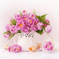 Букет розовых тюльпанов :: Светлана Л.