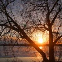 Мгновение заката :: владимир тимошенко