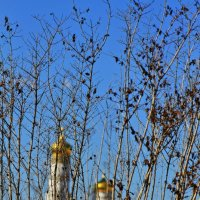 Мой взгляд  Весна  Зарядье :: олег свирский