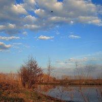 Апрель пришел с теплом и лаской... :: Евгений Юрков