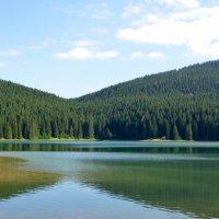 Черногория. Черное озеро в национальном парке Дурмитор. :: Ольга Кирсанова