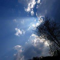 свет в небе :: Heinz Thorns