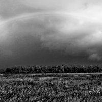 Rainbow rising :: Александр Липецкий