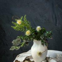 гербарий... :: шмакова тамара
