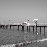 Море и пирс :: Наталья Цыганова