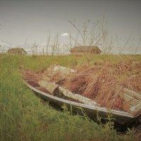 Лодка. :: Лариса Красноперова