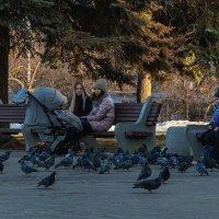 Мы гоняли вчера голубей, завтра спутники пустим в полёт... :: Владимир Максимов