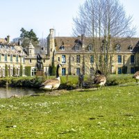 живой парк аббатства Во де Сернэ (Vaux de Cernay) :: Георгий А
