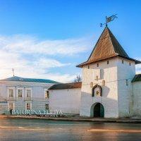 Рыбницкая башня :: Юлия Батурина