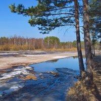 Задышалала звонкой синевой река... :: Лесо-Вед (Баранов)