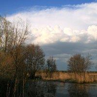 Природа и чувства, и мы молодели, всё обновлялось в капризном апреле... :: Евгений Юрков