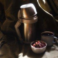 Чай с шиповником :: Роман Пацкевич