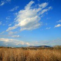 Небо весеннее синее-синее... тучи, как пух, как перо лебединое... :: Евгений Юрков