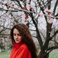 прекрасная весна :: Дарья Тищенко