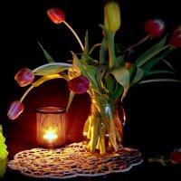 Горят тюльпаны,словно свечи... :: Нэля Лысенко