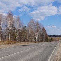 По дорогам апреля :: Галина Кан