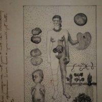 Фрида Кало. Фрида и аборт, 1932 :: Елена Павлова (Смолова)