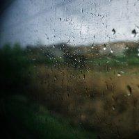 Дождливый день :: Виталий Павлов