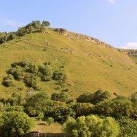 Северный Кавказ :: ALEXANDRA A