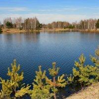 Весна,весна,озера шепчут... :: Нэля Лысенко