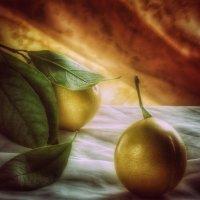 Лимоны :: alexandr lin
