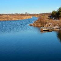 Течёт река в берёзовые дали... :: Нэля Лысенко