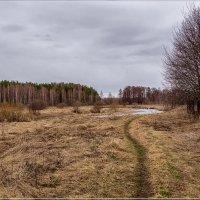 Середина Весны 5 :: Андрей Дворников