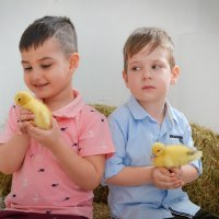 детки :: Ксения Комина