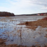 Разлилась река в апреле :: Натала ***