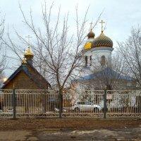 Пусть Воскресение Вербное несет всем в жизнь добро! :: Elena Izotova