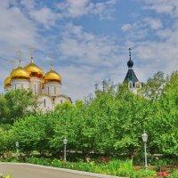 Свято-Успенский Николо-Васильевский монастырь :: Андрей K.